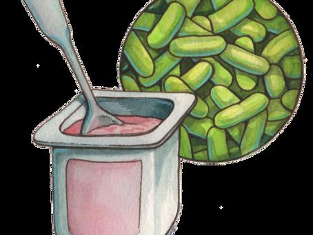 Probióticos e alimentos lácteos fermentados