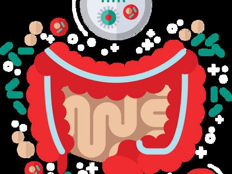 Probióticos e resposta imune