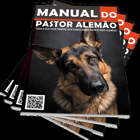 Manual-min.png