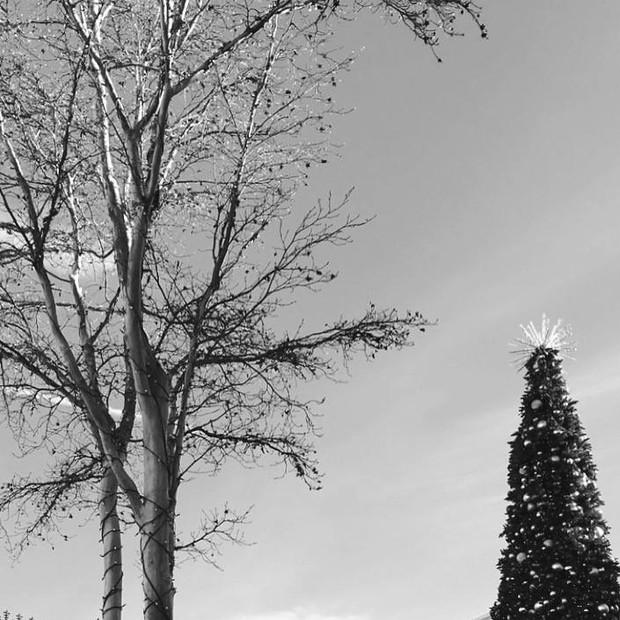 Season's Greetings: Ayurvedic Winter + December Special