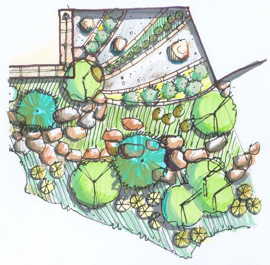 Giezel_plan_close_up_color | South Florida | Professional Landscape Maintenance Service