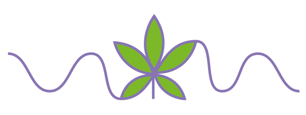 Epilepsy and Cannabis-04.png