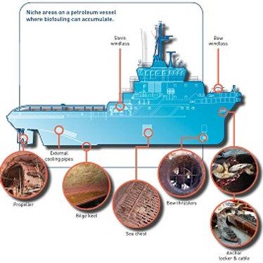 T41 Seawater antifouling