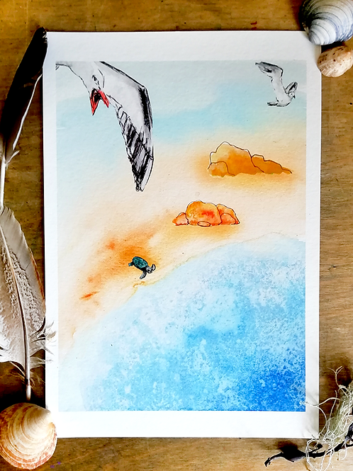Limited Edition Print – Seagull