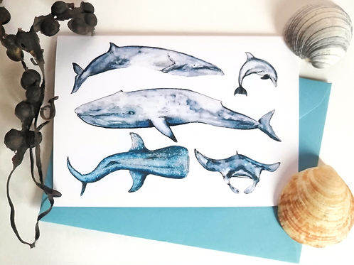 Marine Animals Greetings Card