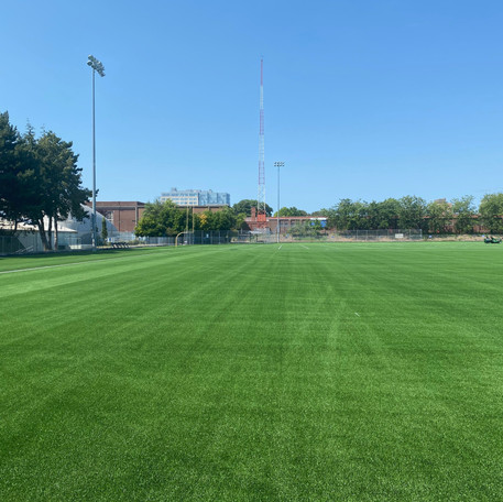 We Have New Turf!