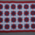 Patriot N.E.W.S pic.JPG