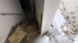 Water-damage-stairs-walls.jpg