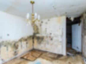 house water damage repair.jpg