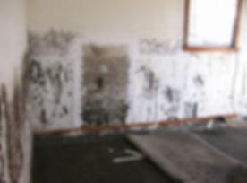 mold damge services atlanta ga.jpg