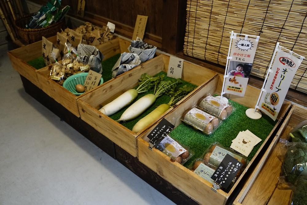 地元の新鮮な野菜も