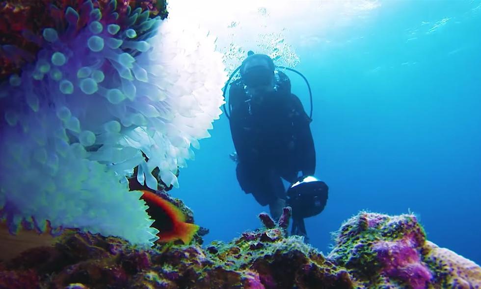 沖縄の海をストリートビューする。 Explore the ocean in Okinawa with underwater Street View.