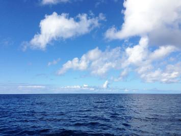 沖永良部の海