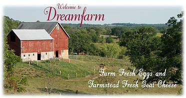 dreamfarm logo.png