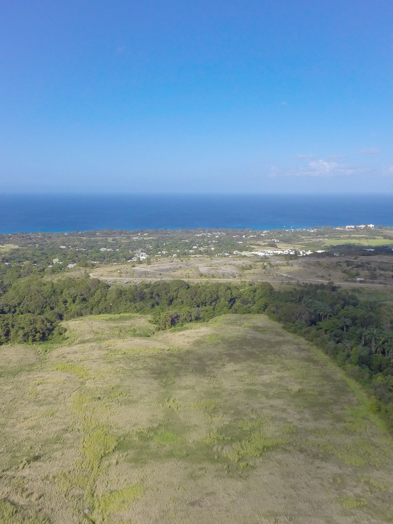 SH Aerial 004.jpg