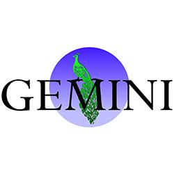 Nuevo Socio: GeminiCorp NV