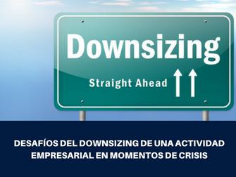 Webinar: Desafíos del downsizing de una actividad empresarial en momentos de crisis