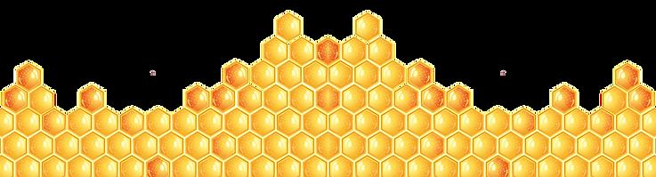 honey bottom.png