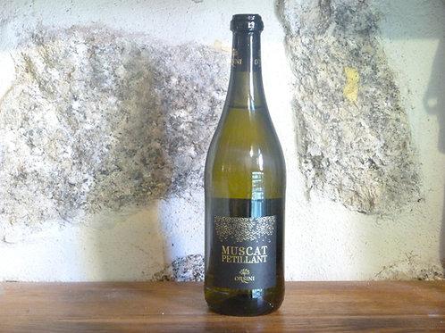 Vin de Muscat pétillant
