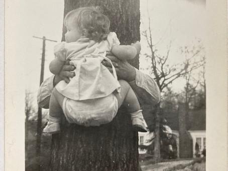 Baby Climbs a Tree