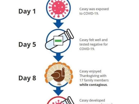 Incubation Timeline