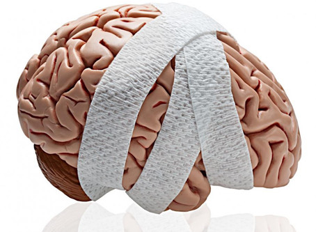 Concussion Continued: From the International Neuropsychology Society Conference in Denver, Colorado!