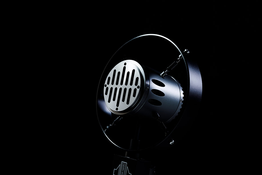 Sontronics Corona microphone close-up of grille and body