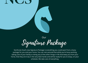 Our Signature Package