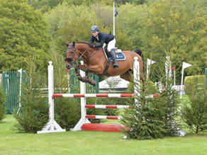 The Showjumping Goes On