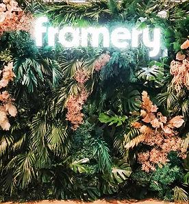 Hey Look - Framery-16.jpg
