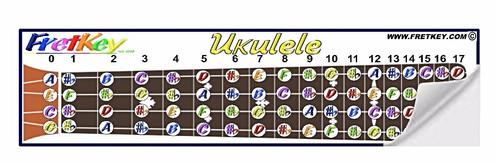 Groovy Large Fretboard Diagram Sticker For Ukulele Wiring 101 Capemaxxcnl
