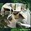 Thumbnail: Natureo - savon à l'ortie et lait de chèvre