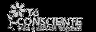 Logo gris_edited.png