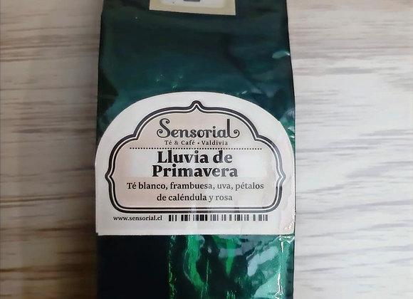 Té blanco Gourmet Lluvia de primavera | 50g