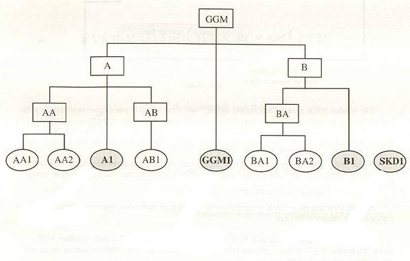 master key system 2.jpg