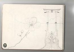 Sketch 2 WY.jpg