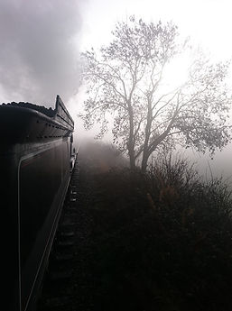 glenn chippendale johnson 7.jpg