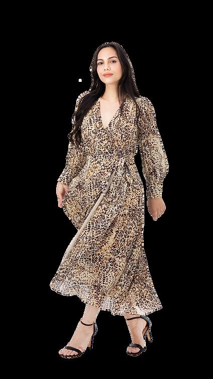 Dress-1.png