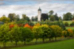 1419_Elbsandsteingerbirge_115.jpg