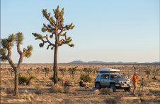 Joshua Tree National Park - California - USA
