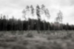 1422_Riga_328.jpg