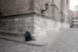 1422_Riga_336.jpg