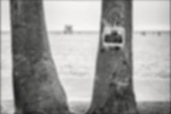 1259_SeaView_Venice_Beach_204-bewerkt-be