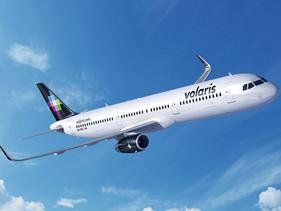 AEREO | Volaris y Kmimos ofrecerán a viajeros nuevo servicio de cuidado para  mascota