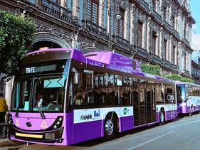 MOVILIDAD | Autobuses DINA Linner G y Ridder G para Corredor Reforma