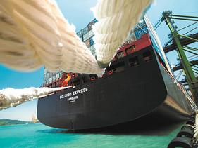 DHL descarboniza todos los envíos de Carga Marítima Consolidada