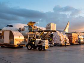 LOGÍSTICA | UPS continúa fortaleciendo su portafolio de servicios