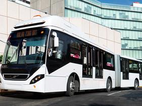 PASAJE | Resuelve RTP licitación de 18 autobuses articulados en favor de Volvo