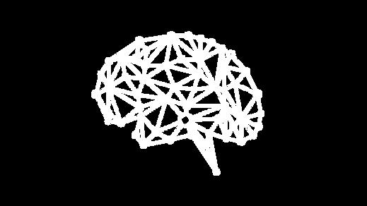 Brein-herwerkt-05.png