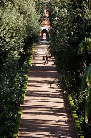 The Gardens.jpg